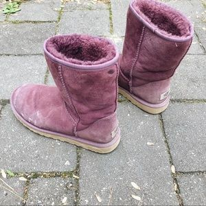 Wine Colored Ugg Boots
